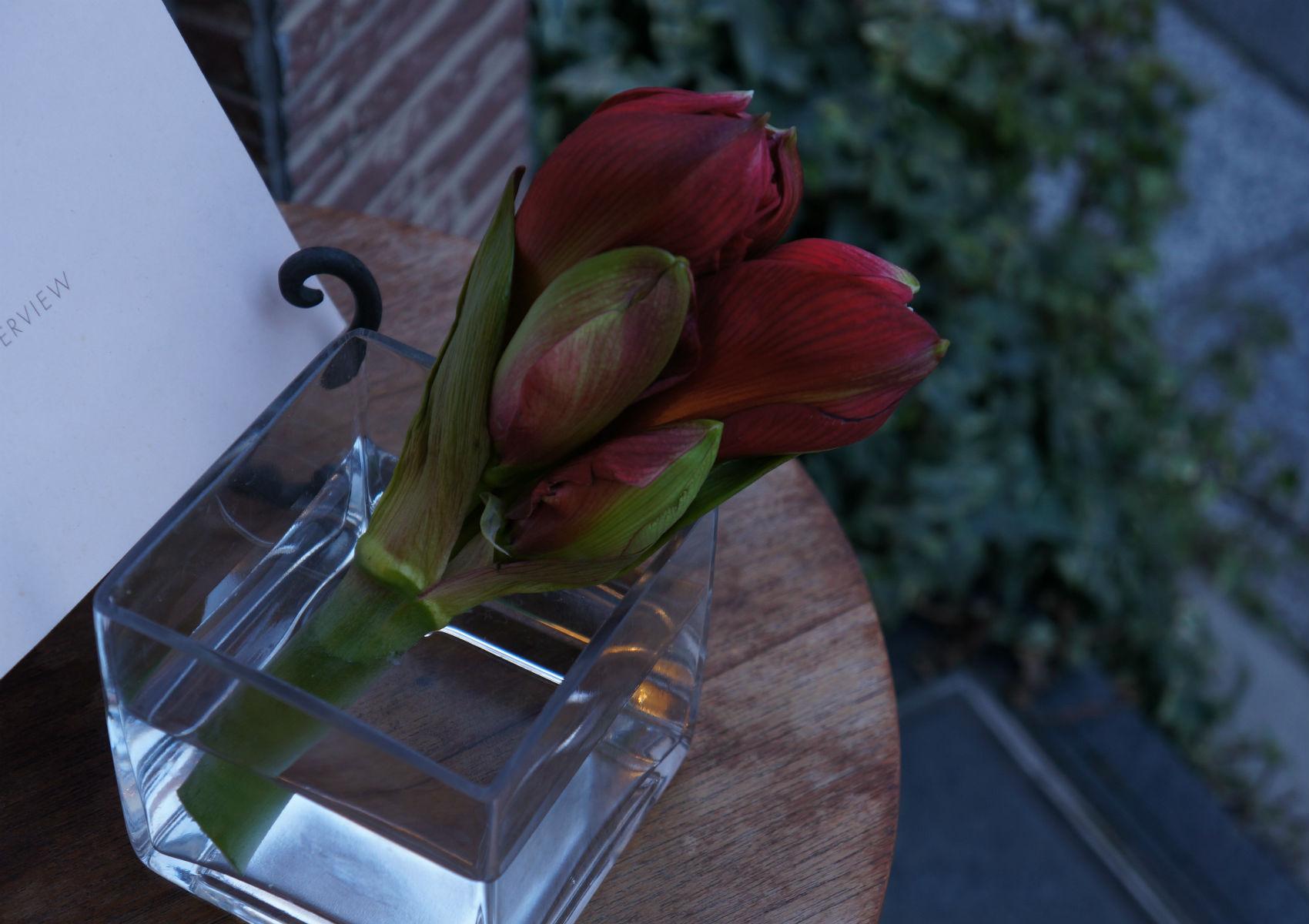 SHOPの花